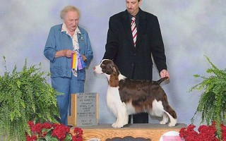 CH Arggow Dansen Frankenstein, Best of Breed