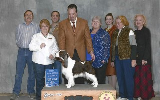 "GCH Dansen's Whilhelmina  ""Willow"""